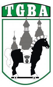 tampa bay green beret logo